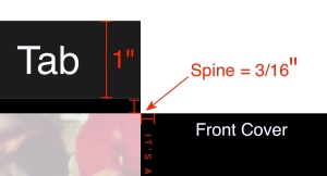 Spine detail